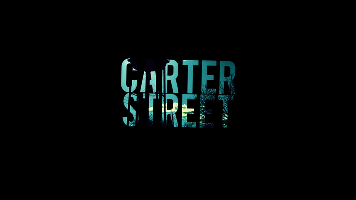Carter Street @ Private Party - Brazil, IN