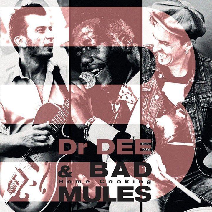 BAD MULES Tour Dates