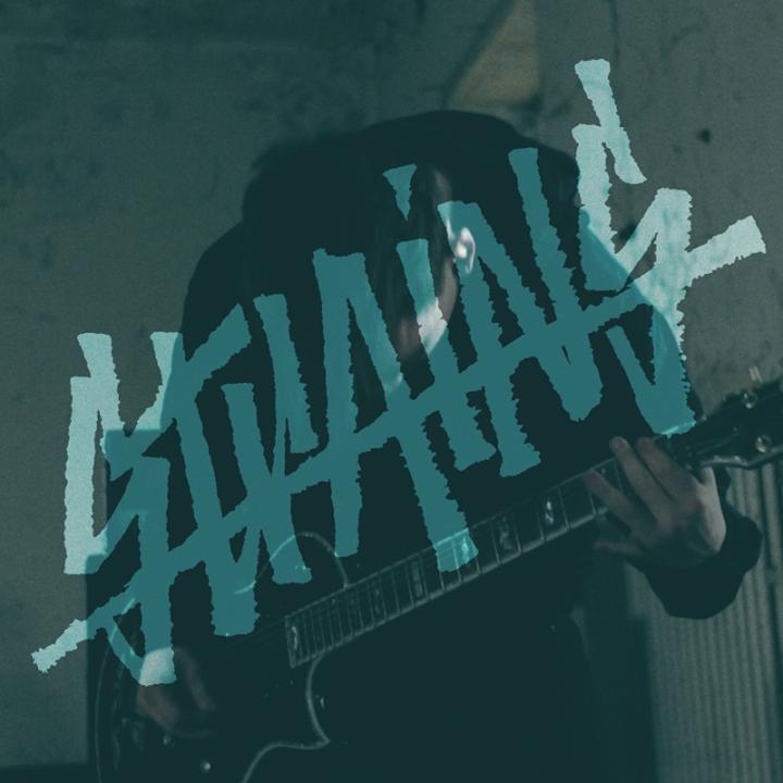 Bandsintown Strains Tickets Kooltuintje May 27 2016