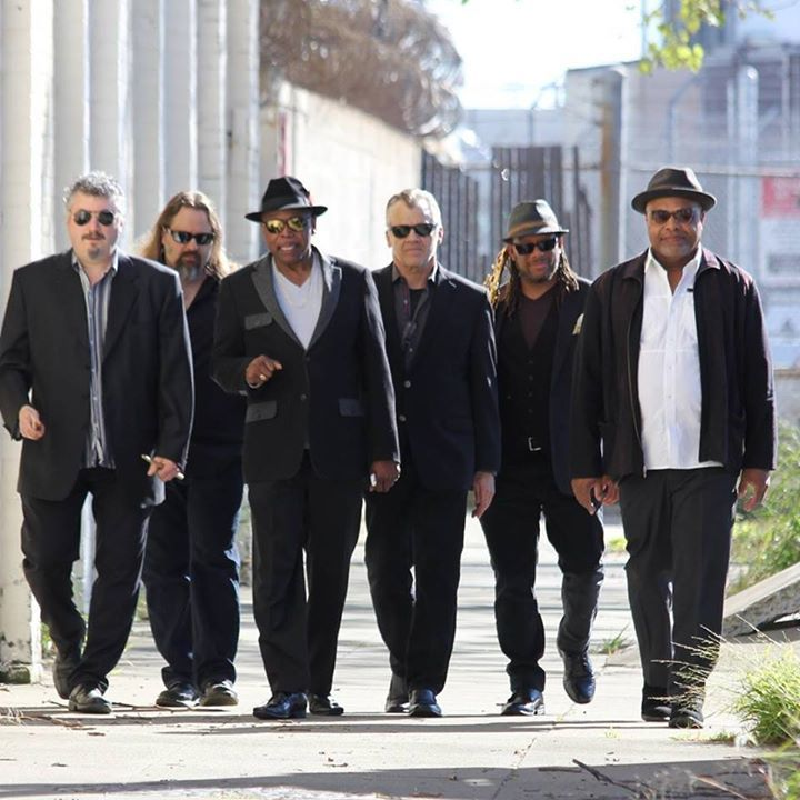 Lovelight Blues Band Tour Dates