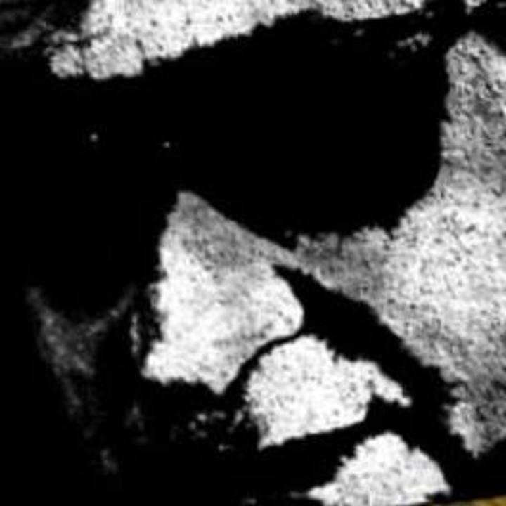 Douglas McLean - Music Tour Dates