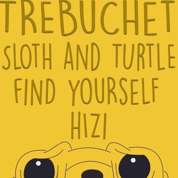Sloth & Turtle Tour Dates