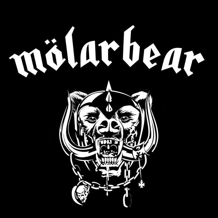 MOLARBEAR Tour Dates