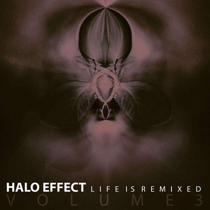 Halo Effect Tour Dates