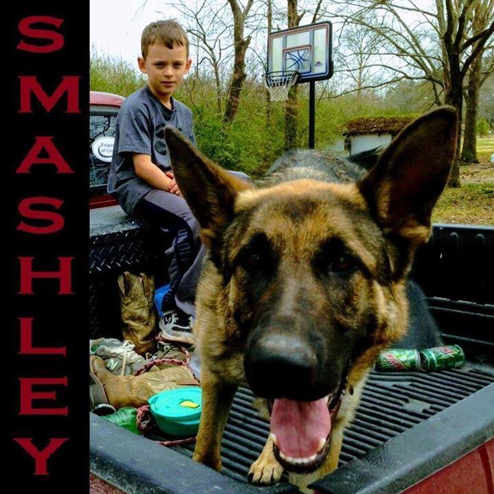 Smashley Tour Dates