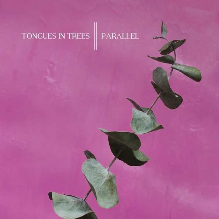Tongues in Trees Tour Dates