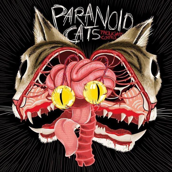 Paranoid Cats Tour Dates