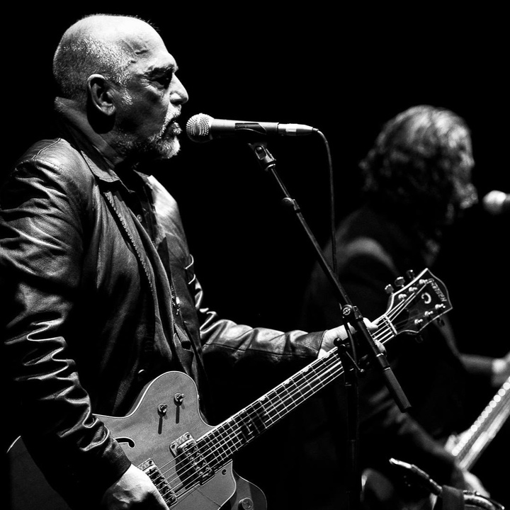 The Black Sorrows @ The Basement - Belconnen, Australia