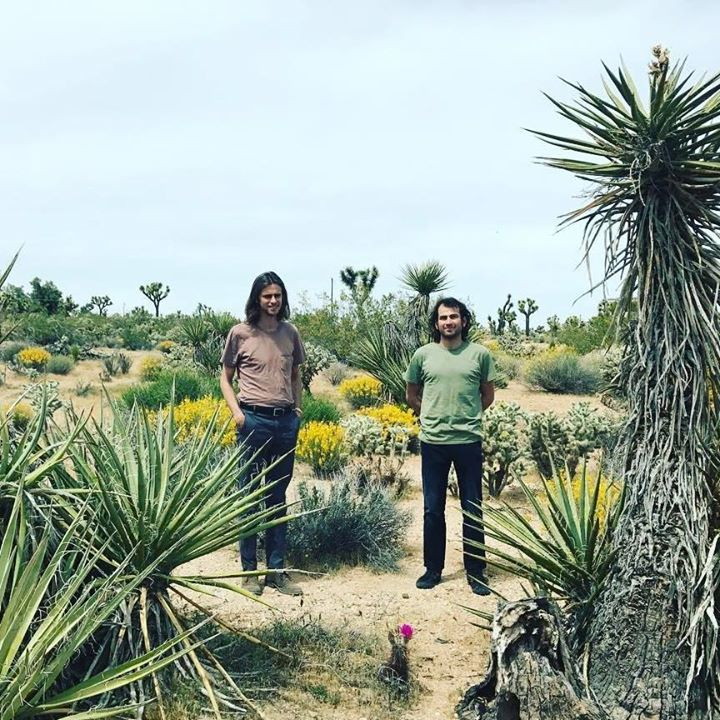 Tremble Weeds @ The Lost Leaf  - Phoenix, AZ