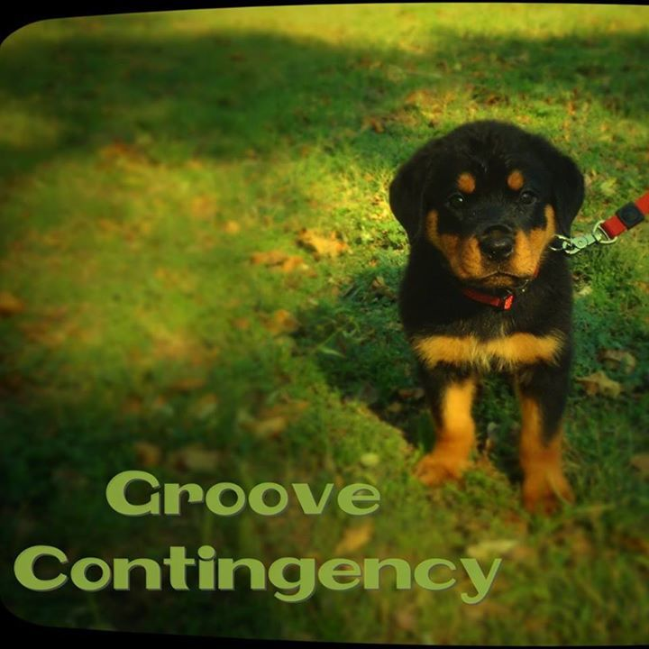 Groove Contingency Tour Dates