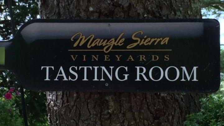 Andy & Bethany @ Maugle Sierra Vineyards - Ledyard, CT