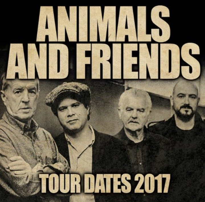 Animals and Friends @ Rock The Boat 2017 - Newcastle, United Kingdom