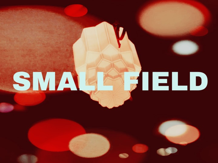Small Field @ The Tardis Room - Portland, OR
