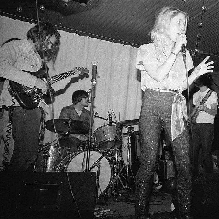 The Minks @ The Cobra - Nashville, TN