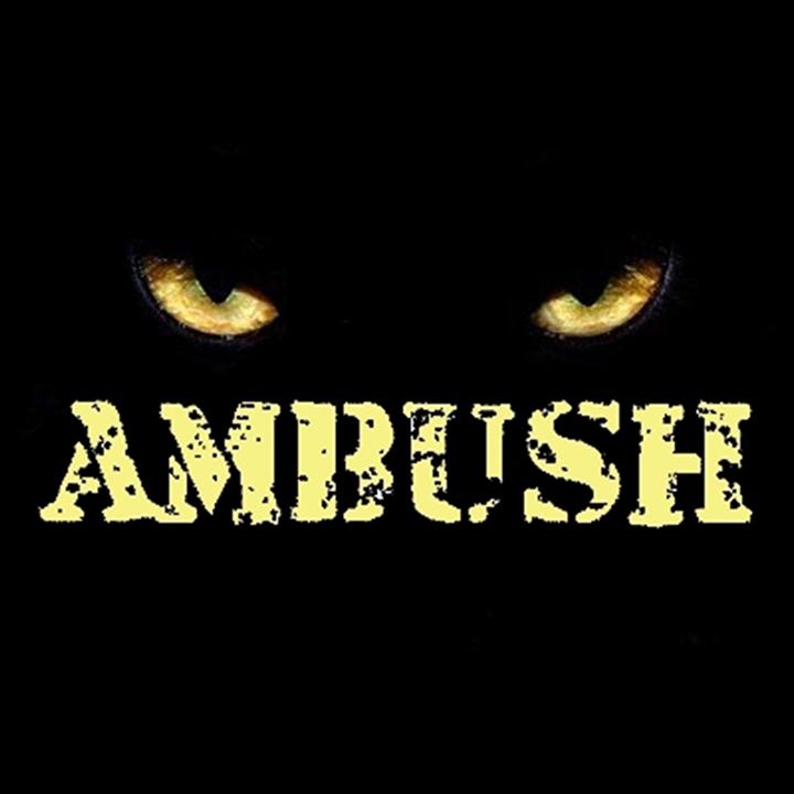 Ambush_BE @ Kid's Rhythm 'N' Blues Kaffee - Antwerp, Belgium
