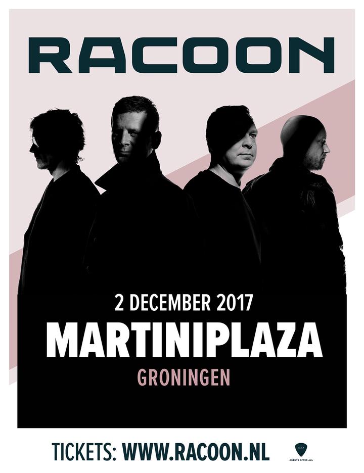 Racoon @ Martiniplaza - Groningen, Netherlands
