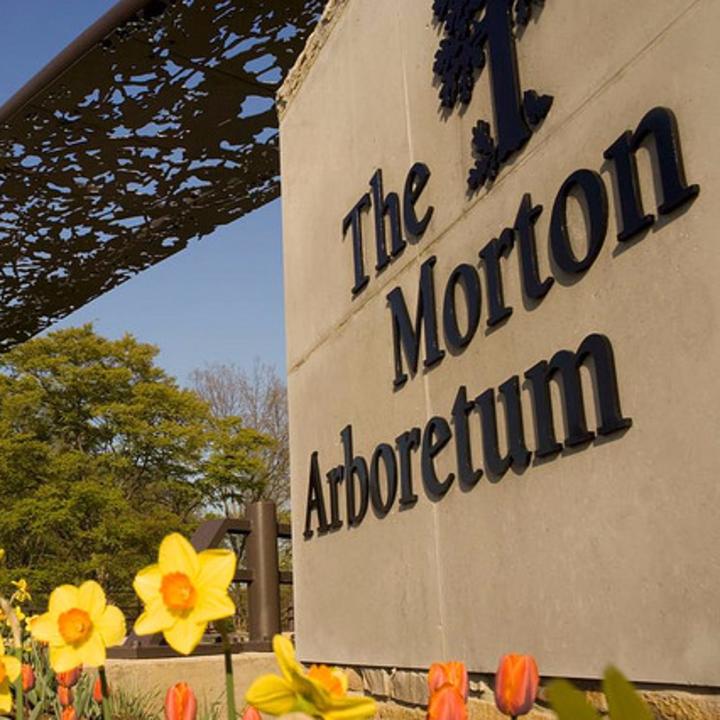 Summer Son @ Morton Arboretum - Lisle, IL