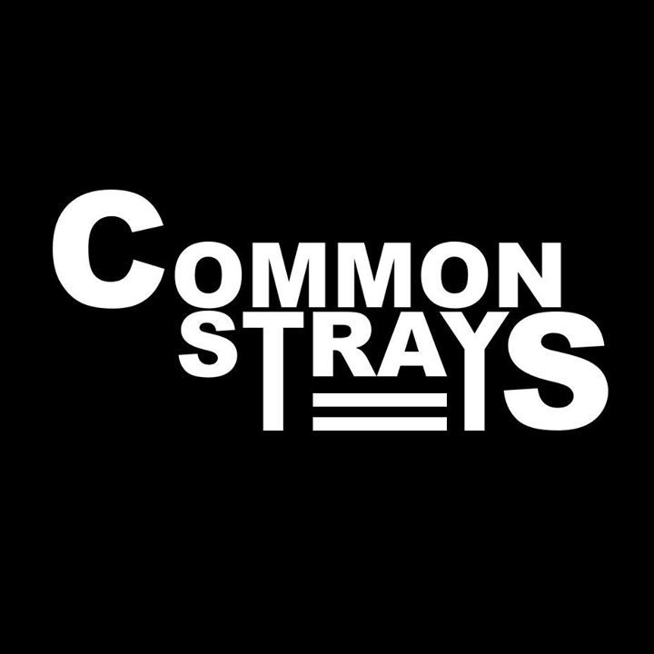 Common Strays Tour Dates