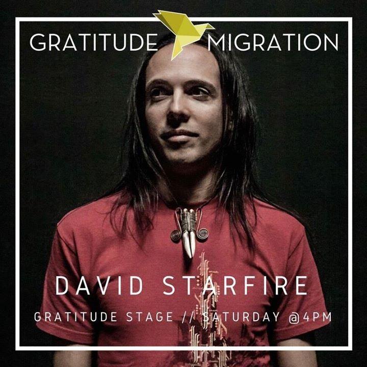 David Starfire Music @ Lights All Night - Dallas, TX