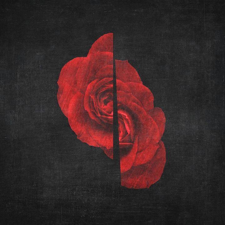 Pensão Flor Tour Dates