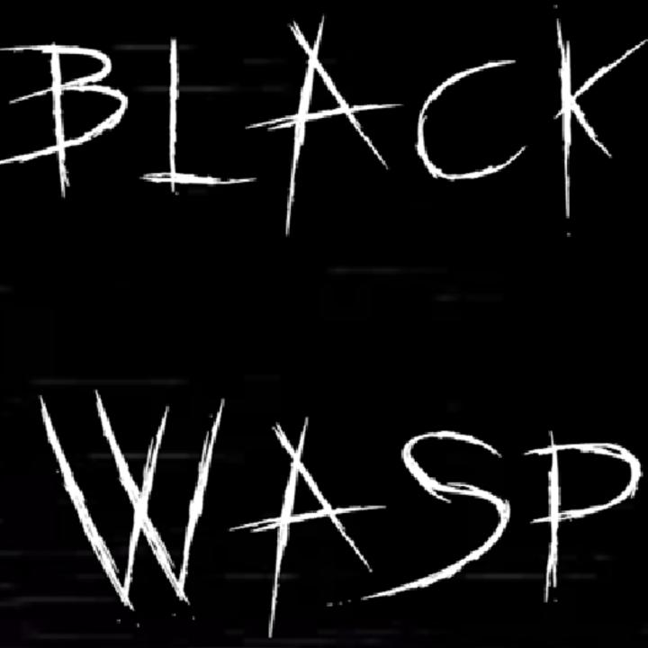 Black Wasp Tour Dates