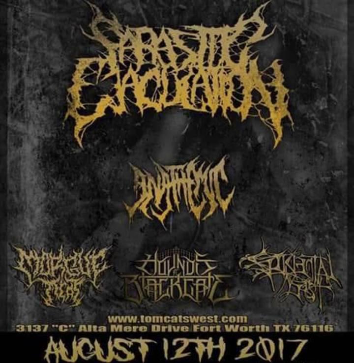 AccidentalIncest Tour Dates
