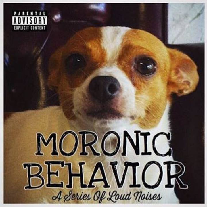 Moronic Behavior Tour Dates
