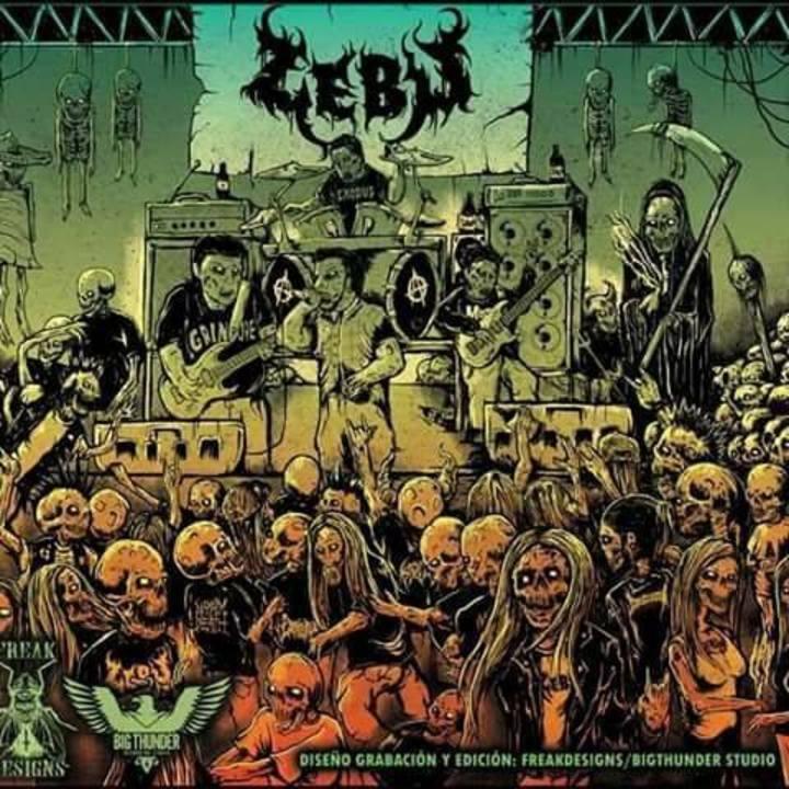 Zebu Tour Dates