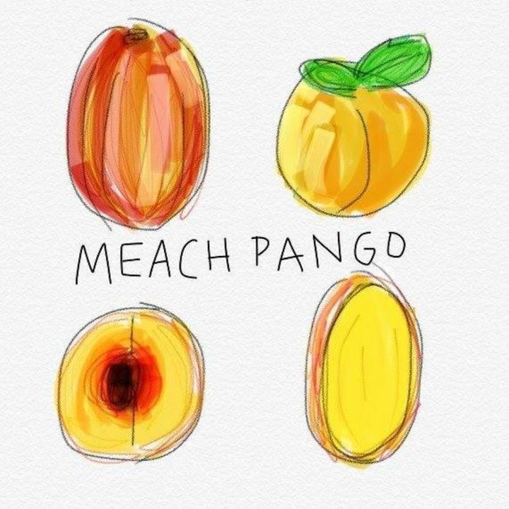 Meach Pango @ The Door - Dallas, TX