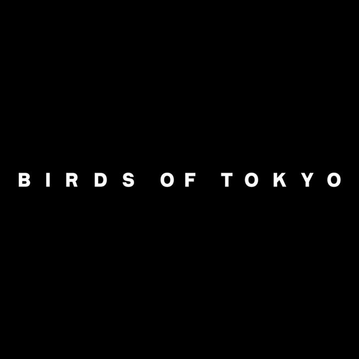 Birds of Tokyo @ The Enmore - Sydney Nsw, Australia