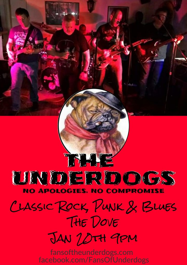Fans of The Underdogs @ The Dove - Newport Pagnell, United Kingdom