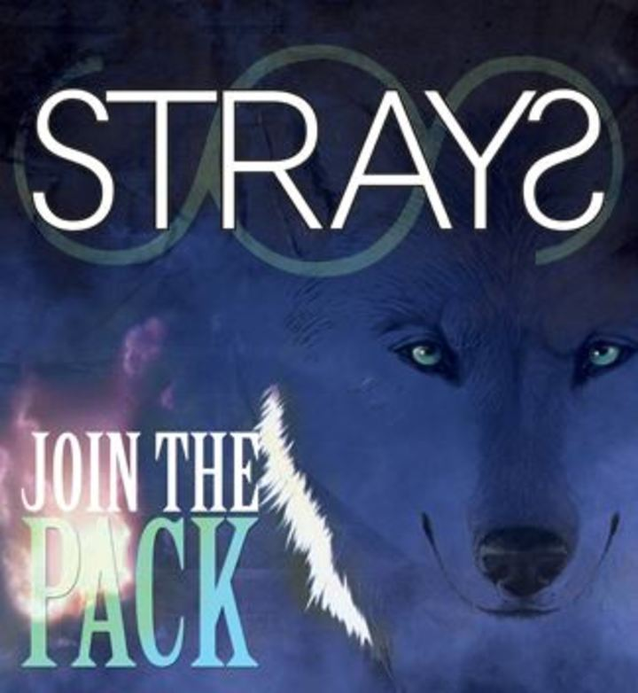 strays Tour Dates