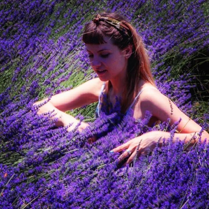 Lavender Fields Tour Dates
