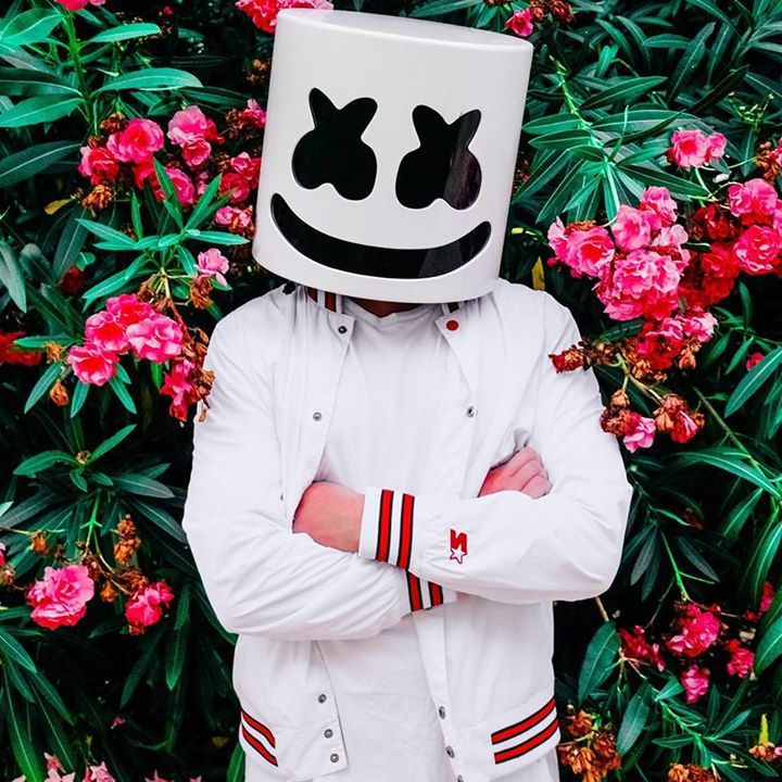Marshmello @ Lollapalooza  - Berlin, Germany