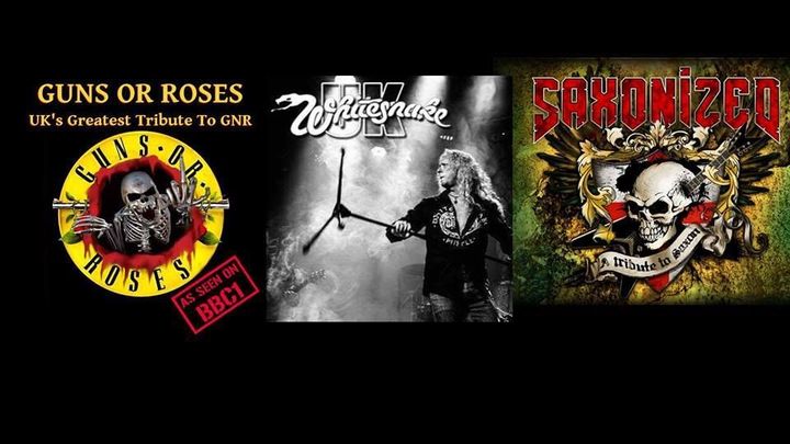 Whitesnake UK (the tribute) @ MFN - Amber Valley, United Kingdom