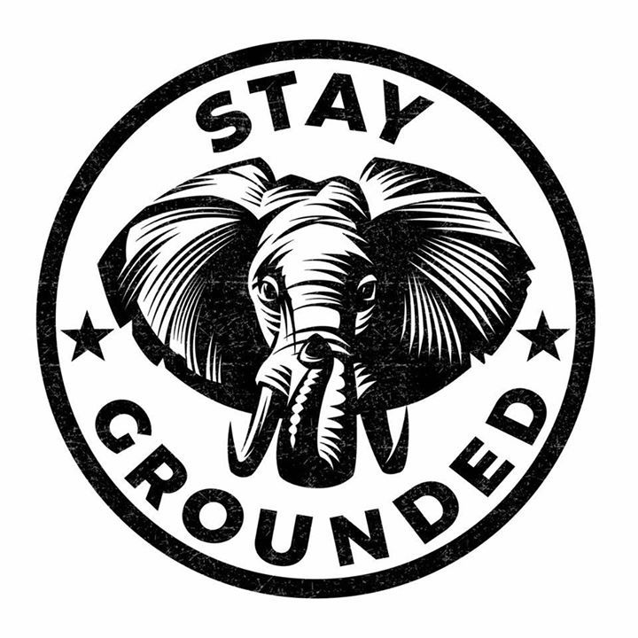 Stay Grounded Tour Dates