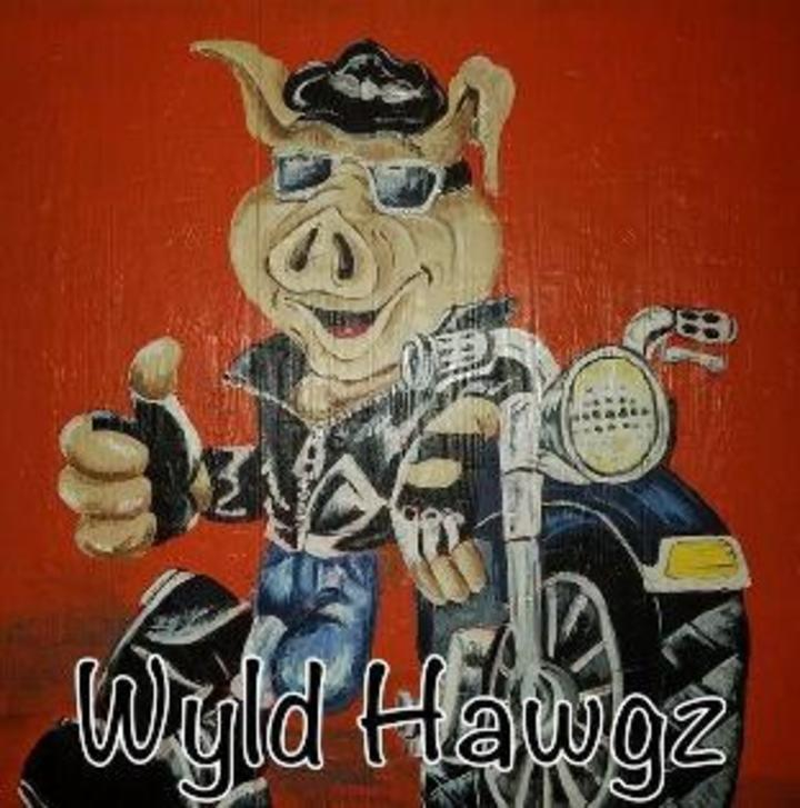 Themattsanders @ Wyld Hawgz - Tulsa, OK