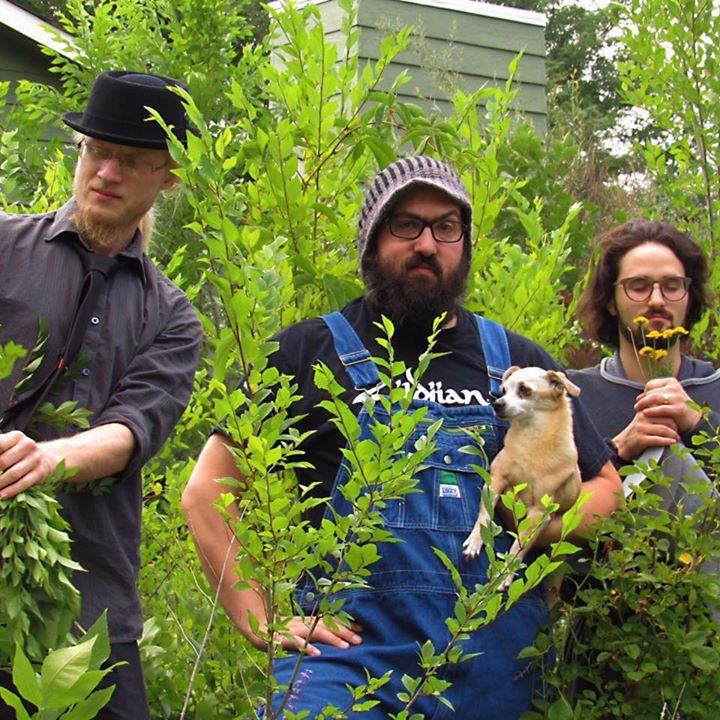 Charlie Milo Trio @ Be On Key Psychedelic Ripple - Denver, CO