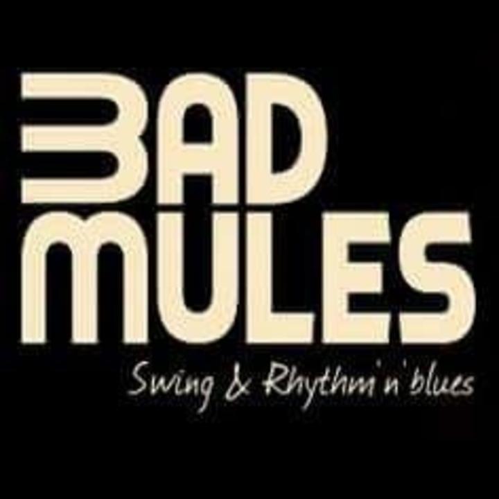 BAD MULES @ Josh Miller & Bad Mules / Salle L'Azile - La Rochelle, France