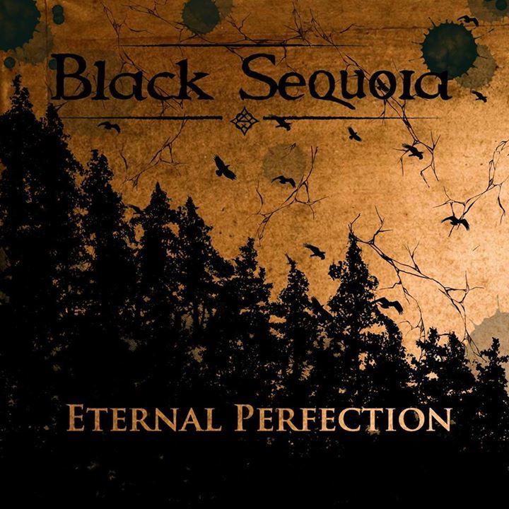 Black Sequoia Tour Dates