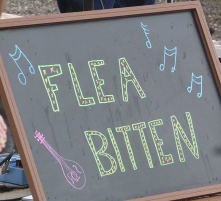 Flea Bitten Tour Dates