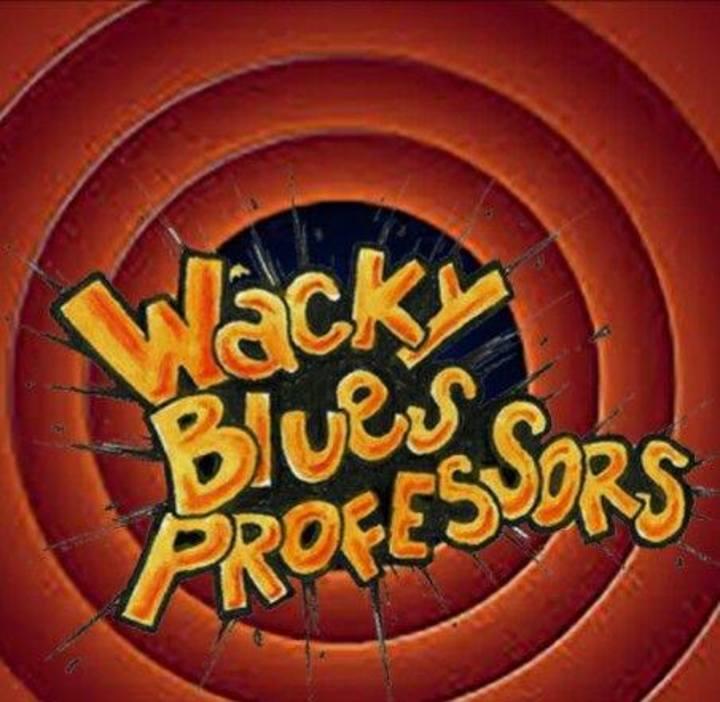 Wacky Blues Professors @ Mladinski center Šmartno ob aki - Šmartno Ob Paki, Slovenia