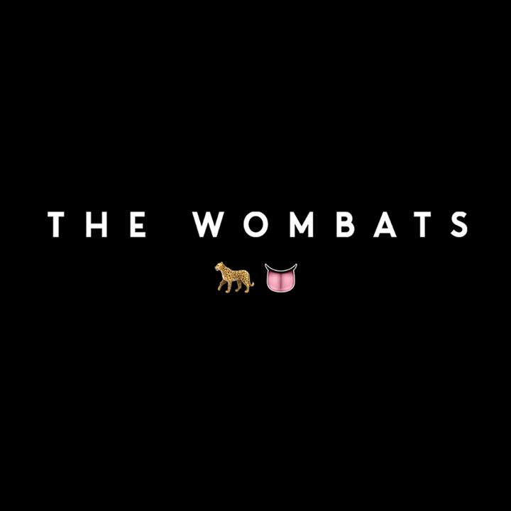 The Wombats @ Saint Andrews Hall - Detroit, MI
