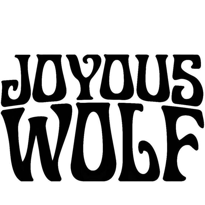 Joyous Wolf @ Sonic Boom Festival 2017 - Janesville, WI