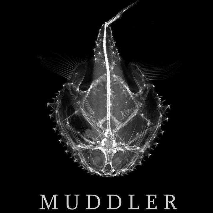 MuDdLeR Tour Dates