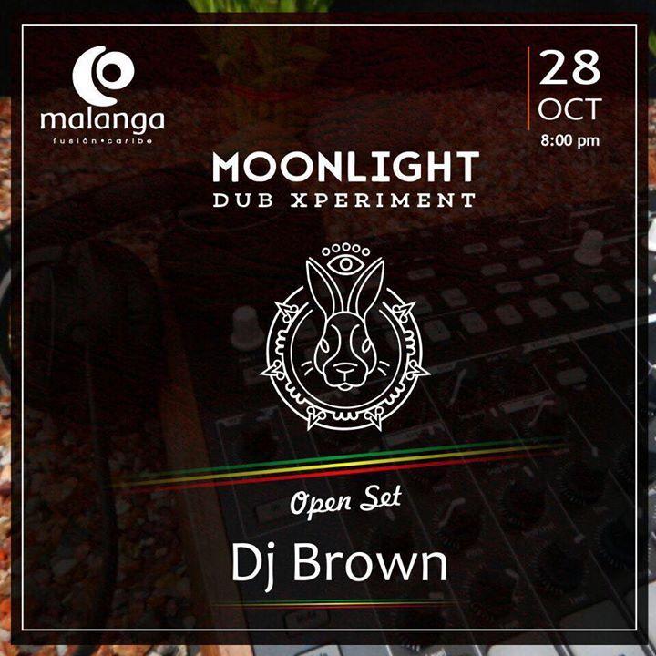 Moonlight Dub Xperiment Tour Dates