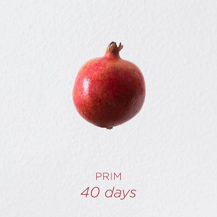 PRIM Tour Dates