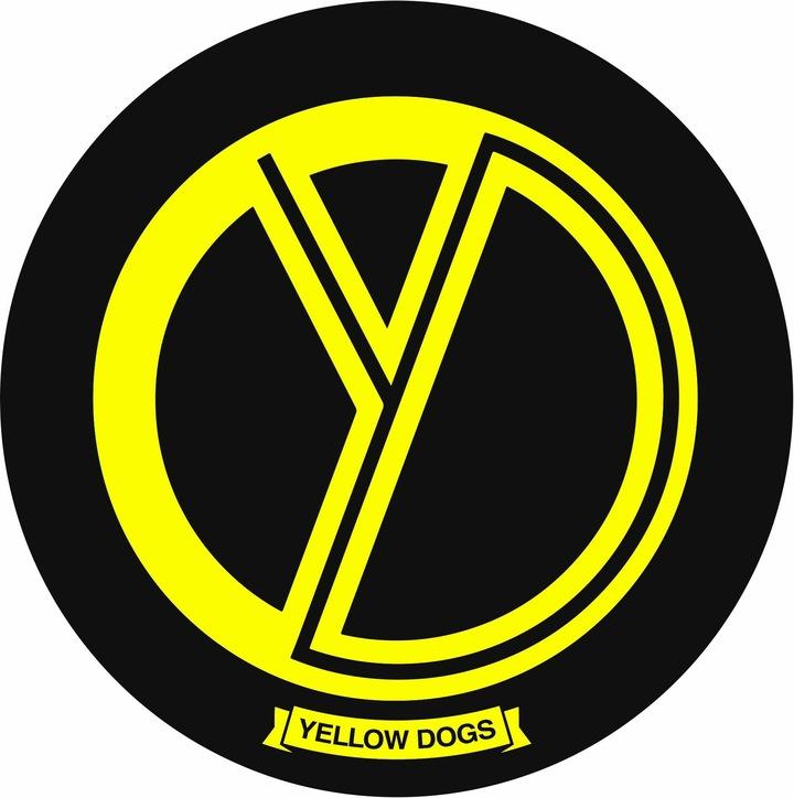 The Yellow Dogs @ FocusDay - Oron-La-Ville, Switzerland