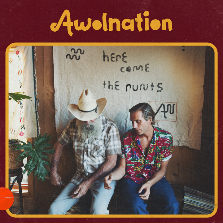 AWOLNATION @ The Wiltern ** 2nd Show Added - Los Angeles, CA