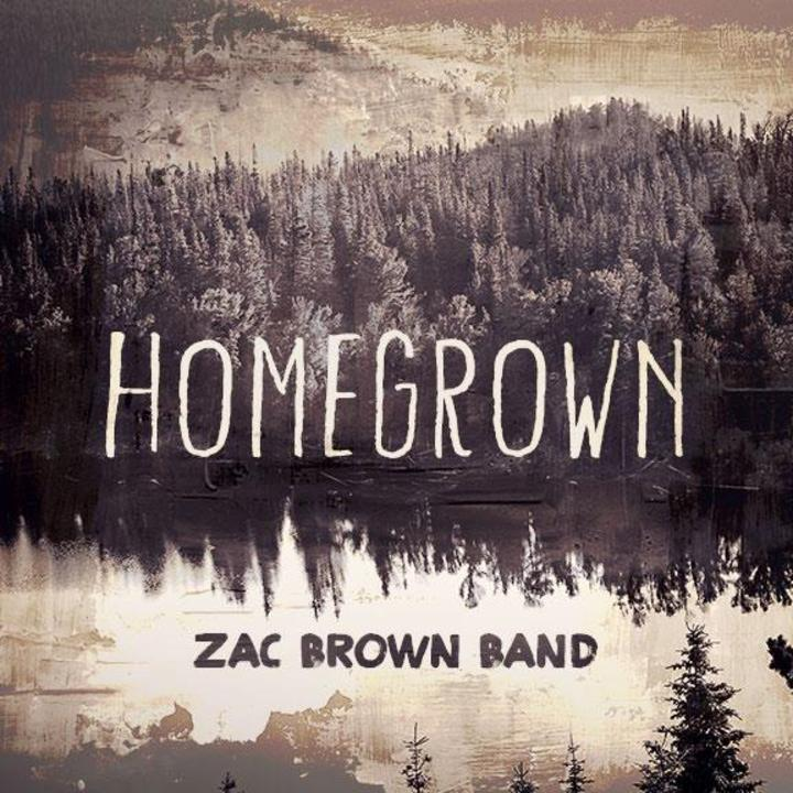 Zac Brown Band  @ Thompson Boling Arena - Knoxville, TN